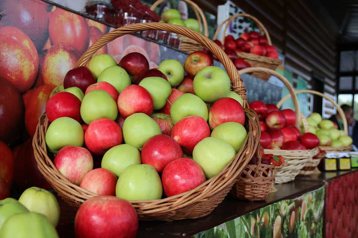 Вкусы России 2020 Мичуринские яблоки